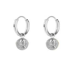 stalen oorbellen kleine zegel – zilver